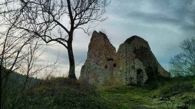 ruins of the Tyrov castle in central Czechia